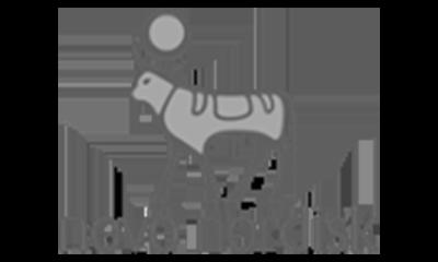 grey-novo-nordisk.png