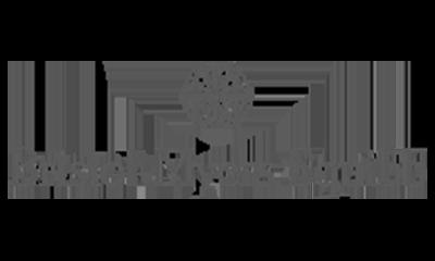 grey-bristol myers